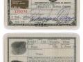 Marilyn-Monroe-pasaporte