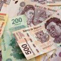 En busca de un modelo económico: Leopoldo González