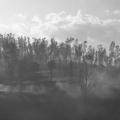 Jesús Janacua Benites:Percibir o no percibir el cambio climático